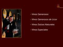JEREZ - Classificações e tipos de vinhos - Missão Sommelier (45)